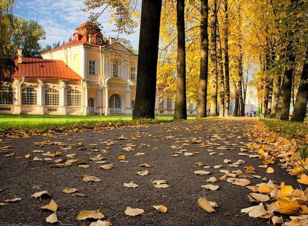 Петербуржцев ожидают прохладные выходные