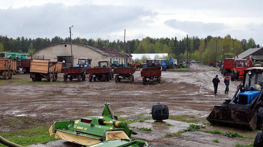 КСП: «Субсидии аграриям в Кировской области предоставлялись с нарушениями»